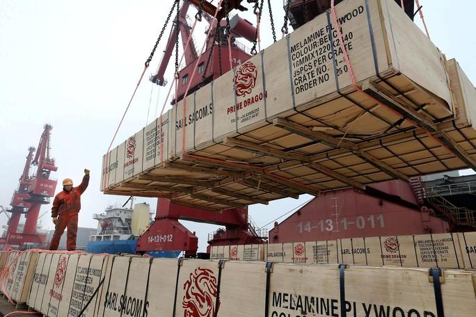 Trung Quốc đau đầu với chuyện trả đũa thương mại Mỹ - Ảnh 4.