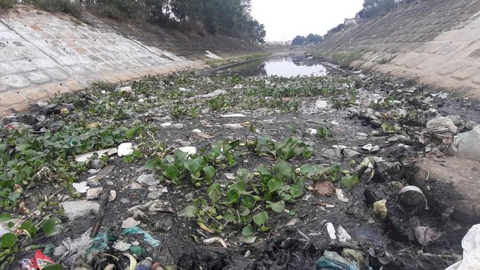 Cá chết trắng gây ô nhiễm tại Khe Cạn, người dân đóng cửa cả ngày lẫn đêm - Ảnh 4.