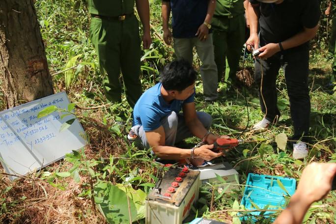 Khoan lỗ 20 cm rồi đổ thuốc diệt cỏ hạ độc 3.500 cây thông ở Lâm Đồng - Ảnh 2.