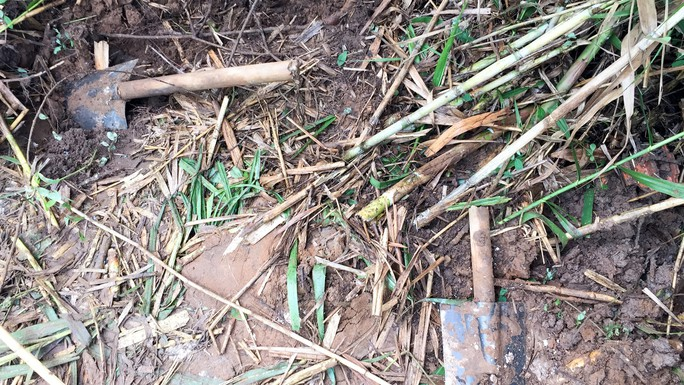 Thiếu quỹ đất, chôn heo bệnh gần khu dân cư  - Ảnh 5.