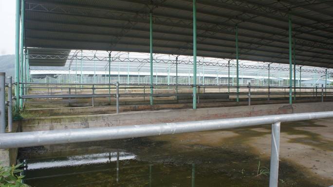Rà soát tổng thể dự án ngàn tỉ chăn nuôi bò liên quan tới cha con ông Trần Bắc Hà - Ảnh 3.