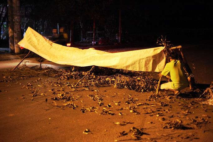 Nửa đêm, người dân Quảng Ngãi chặn xe vì bức xúc mùi hôi - Ảnh 2.