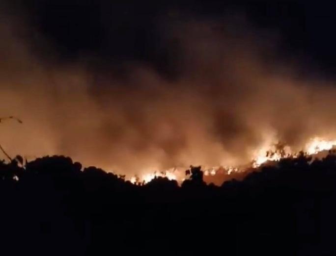 Cháy hơn 5.000 m2 thực bì trên núi Sơn Trà - Ảnh 2.