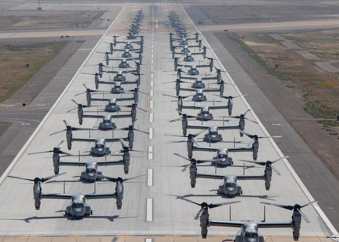 """Trực thăng quân sự Mỹ phô diễn sức mạnh trong tập trận """"Voi đi bộ"""" - Ảnh 7."""
