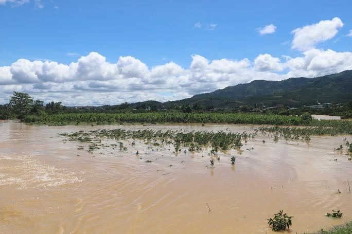 Lũ quét kinh hoàng tại TP Bảo Lộc, tỉnh Lâm Đồng - Ảnh 2.