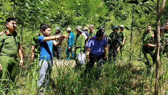 Bắt giữ Kế hấp, kẻ cầm đầu vụ hạ độc rừng thông 3.500 cây ở Lâm Đồng - Ảnh 2.