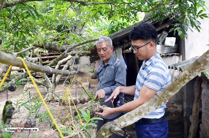 Ngỡ ngàng với khu vườn lan cổ thụ ở Tuyên Quang - Ảnh 6.
