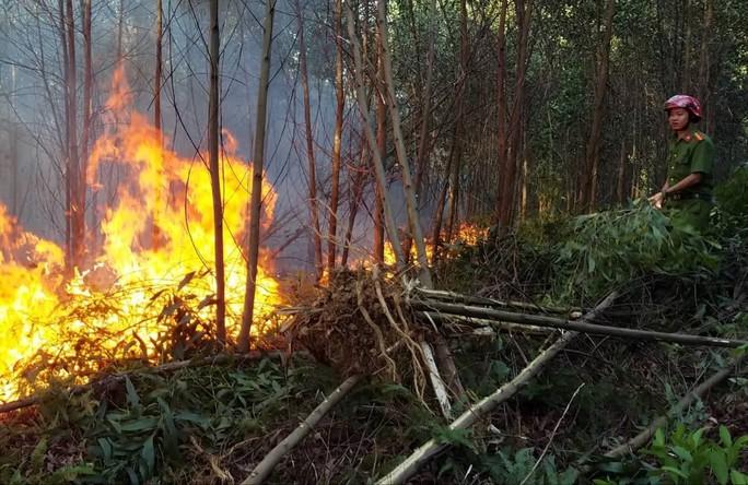 Rừng khắp nơi ở Thừa Thiên Huế đang cháy ngùn ngụt - Ảnh 1.