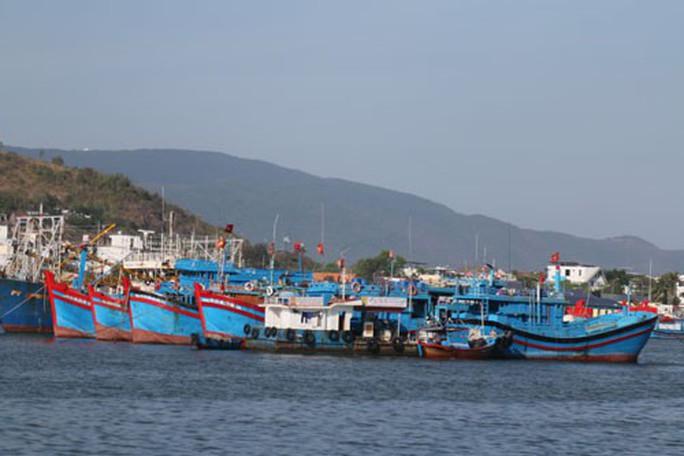 Một triệu lá cờ Tổ quốc cùng ngư dân bám biển: Khơi dậy lòng yêu nước, hướng về biển, đảo - Ảnh 1.
