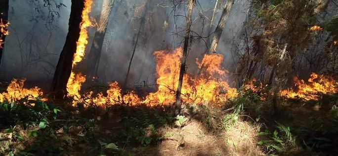 Cháy rừng kinh hoàng ở Hà Tĩnh: Lập chốt chặn trên QL 1A cũ, sơ tán dân - Ảnh 9.