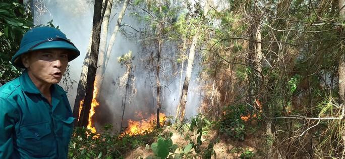 Cháy rừng kinh hoàng ở Hà Tĩnh: Lập chốt chặn trên QL 1A cũ, sơ tán dân - Ảnh 10.