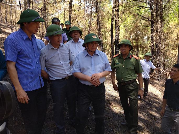 Trưởng Ban Tổ chức Trung ương Phạm Minh Chính thị sát vụ cháy rừng kinh hoàng ở Hà Tĩnh - Ảnh 1.