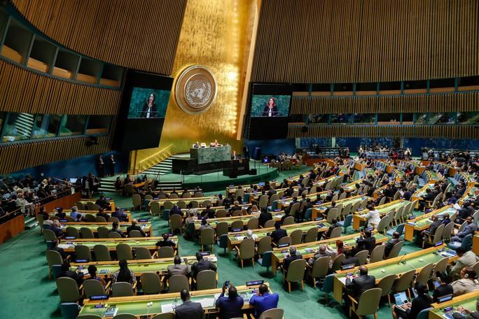 Đắc cử Ủy viên không thường trực HĐBA LHQ: Việt Nam sẽ đóng góp nhiều cho thế giới - Ảnh 1.