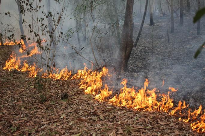 Hết cháy rừng lại lo lũ quét - Ảnh 2.