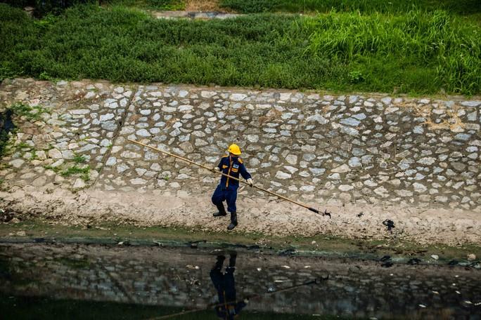 Sau khi xả nước hồ Tây vào sông Tô Lịch, thấy cá chết hàng loạt - Ảnh 4.