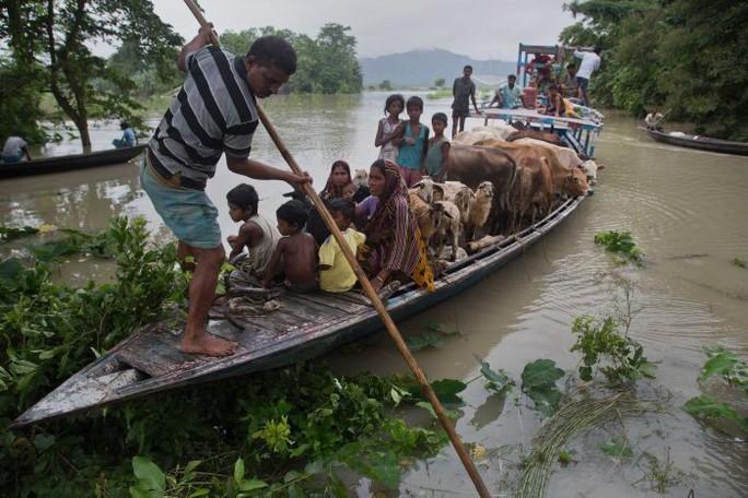 Lũ lụt khủng ở Nam Á, 180 người chết, hàng triệu người di dời - Ảnh 3.