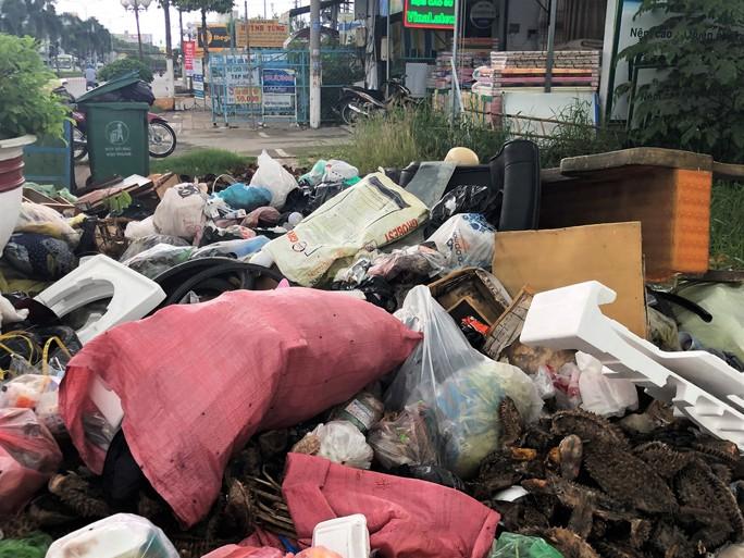 Dân bức xúc vì bãi rác nằm án ngữ cửa ngõ vào TP Bạc Liêu - Ảnh 3.