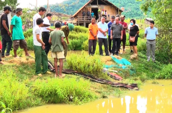 Khánh Hòa: 4 em nhỏ chết đuối thương tâm tại ao nước trước nhà - Ảnh 2.