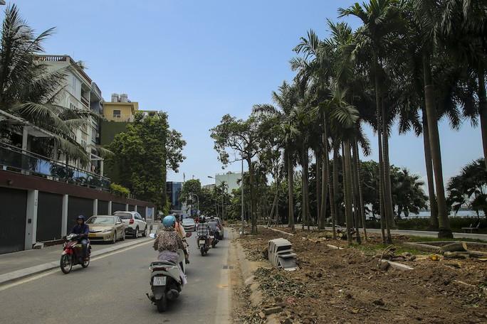 Hà Nội: Di dời hàng trăm cây hoa sữa về bãi rác Nam Sơn lớn nhất thành phố - Ảnh 4.