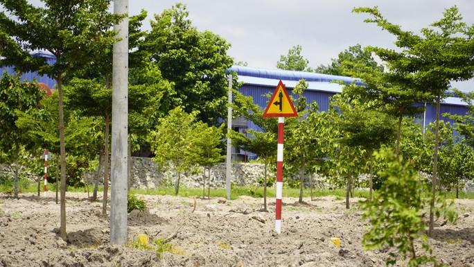 Thêm 1 dự án công ty Alibaba rao bán đất nền bị cưỡng chế sáng mai - Ảnh 2.