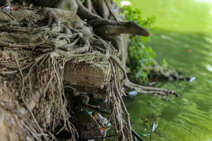 Bờ kè quanh hồ Gươm sụt lún đã nhiều năm nhưng chưa được khắc phục - Ảnh 12.