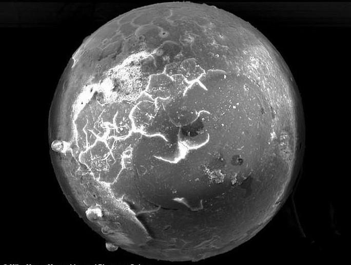 Phát hiện đàn trai hóa thạch ngậm ngọc ngoài hành tinh - Ảnh 1.