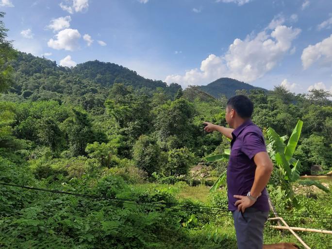 Doanh nghiệp nhận đất rừng rồi bỏ hoang - Ảnh 1.
