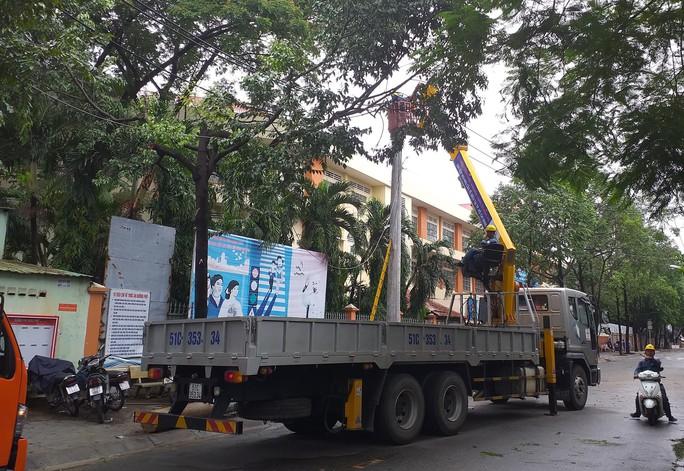 TP HCM: Cây xanh bật gốc đè ôtô, quận Tân Phú cúp điện - Ảnh 3.