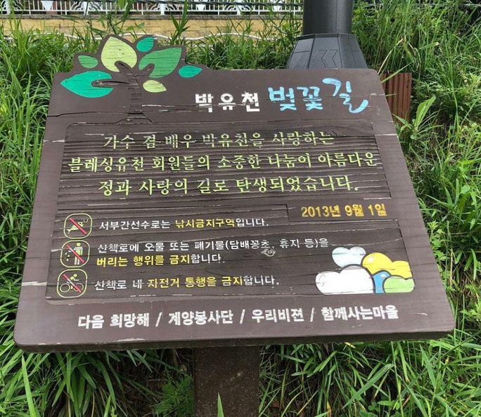 Hàng loạt sao Hàn vướng bê bối, ngành du lịch mang vạ - Ảnh 5.