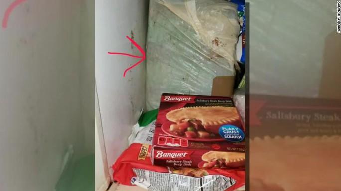 Phát hiện xác ướp trẻ sơ sinh trong tủ lạnh hàng chục năm - Ảnh 2.