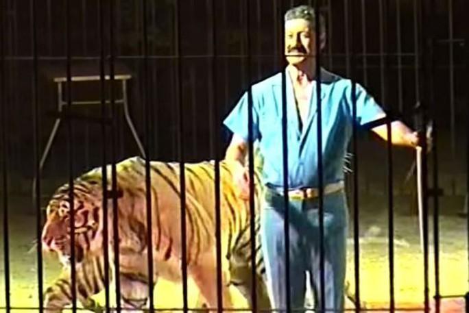 Người đàn ông bị 4 con hổ quần chết - Ảnh 1.