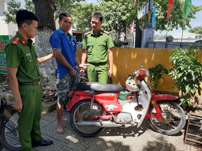 Trộm xe gắn máy để đi trộm bò - Ảnh 1.