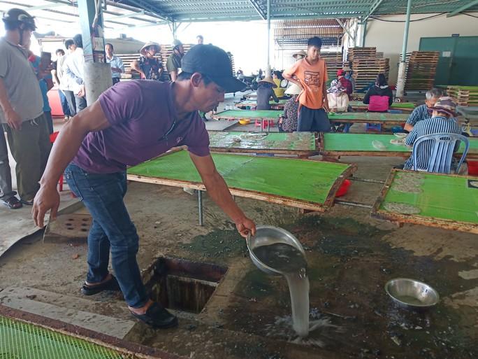 Đình chỉ hoạt động cơ sở gây ô nhiễm làm chết cá ở sông Chà Và - Ảnh 1.
