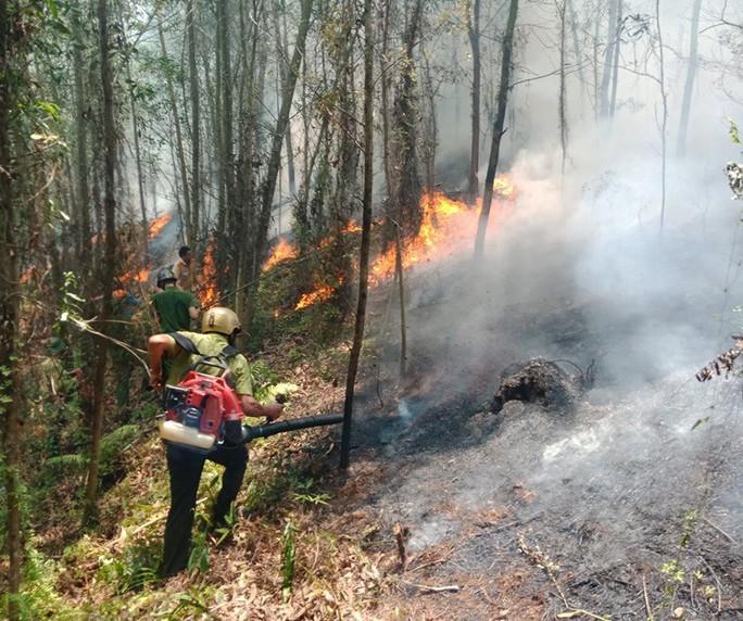 Hà Tĩnh lại xảy ra cháy rừng - Ảnh 1.