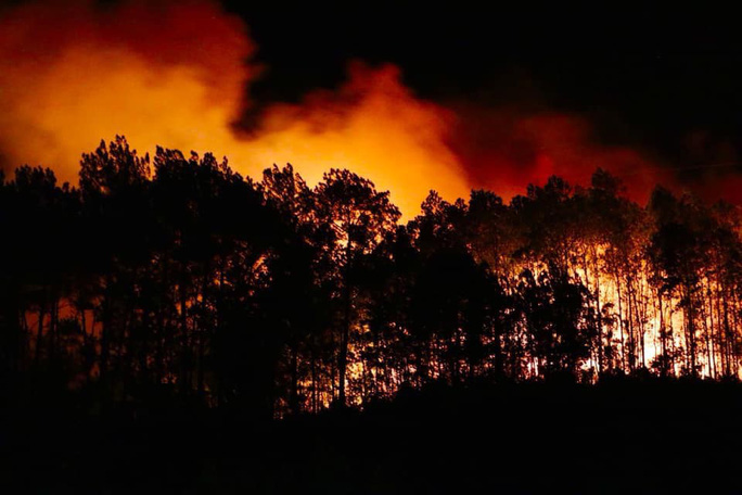 Rừng tại Hà Tĩnh cháy đỏ trời trong đêm, nhiều hộ dân phải sơ tán khẩn cấp - Ảnh 2.
