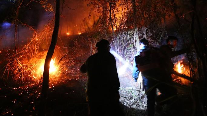 Rừng tại Hà Tĩnh cháy đỏ trời trong đêm, nhiều hộ dân phải sơ tán khẩn cấp - Ảnh 6.