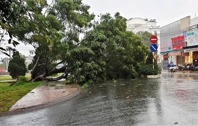 Lâm Đồng: Hàng chục nhà tốc mái do lốc xoáy - Ảnh 4.