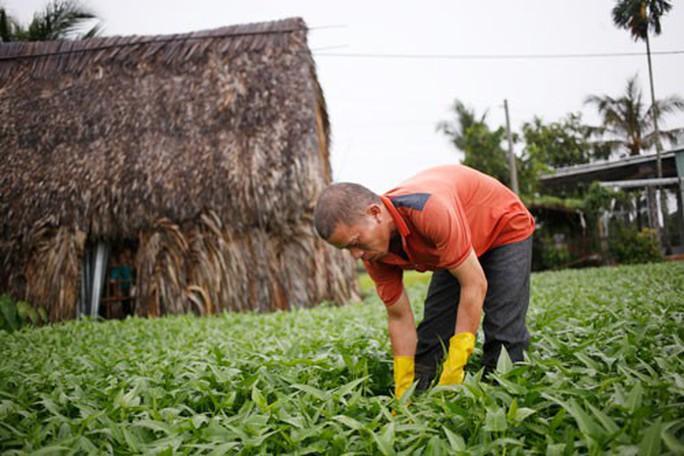Đất nông nghiệp teo tóp dần - Ảnh 1.