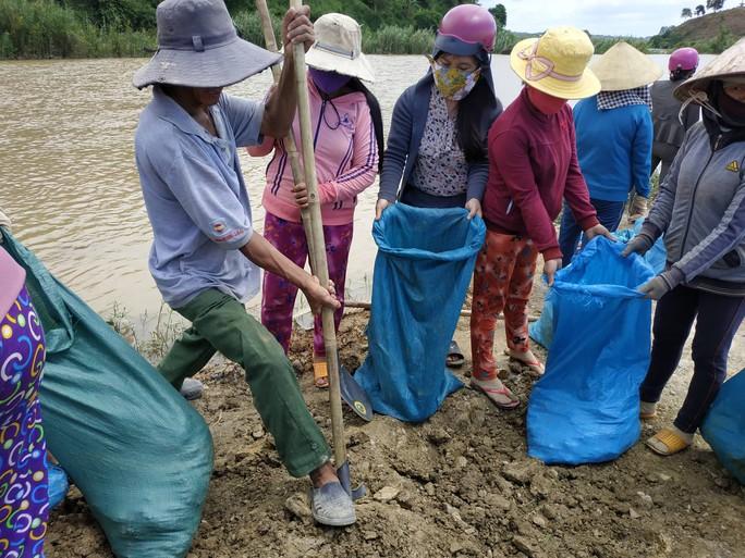 Đê vỡ, nước mắt hòa nước lũ nơi vựa lúa 1.000 ha - Ảnh 2.