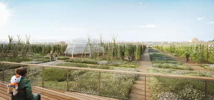 Độc đáo nông trại sân thượng lớn nhất thế giới - Ảnh 3.