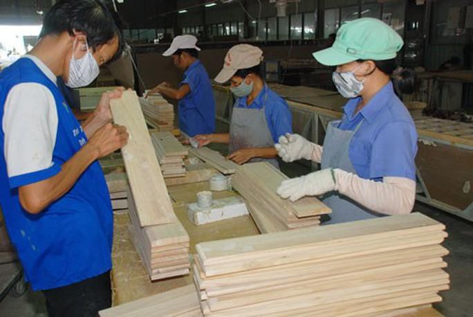 Ngành gỗ không lo nguồn gốc nguyên liệu - Ảnh 1.