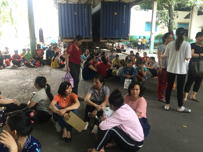 Công nhân Công ty CP Thanh Bình đã trở lại làm việc - Ảnh 2.