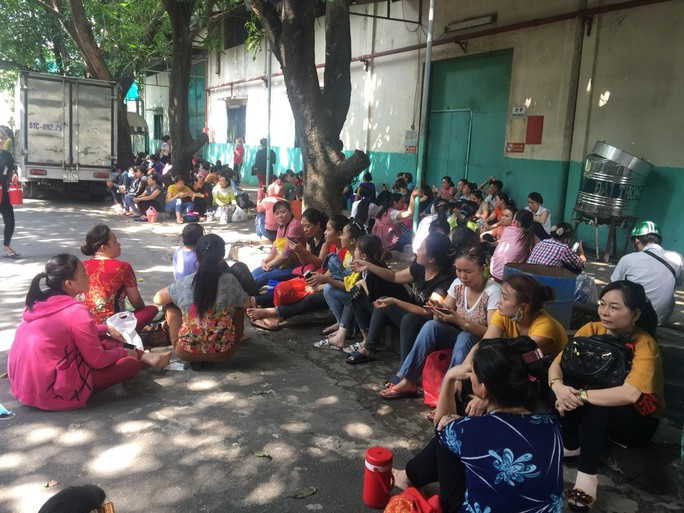 Công nhân Công ty CP Thanh Bình đã trở lại làm việc - Ảnh 1.