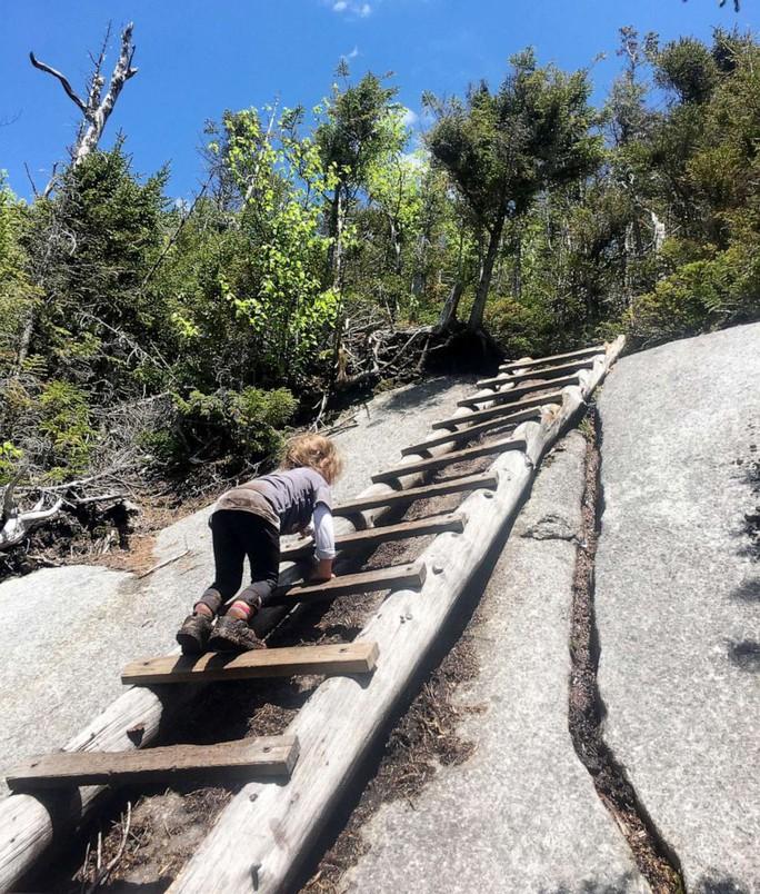 Bé gái 4 tuổi mê leo núi chinh phục thành tích đáng nể - Ảnh 3.