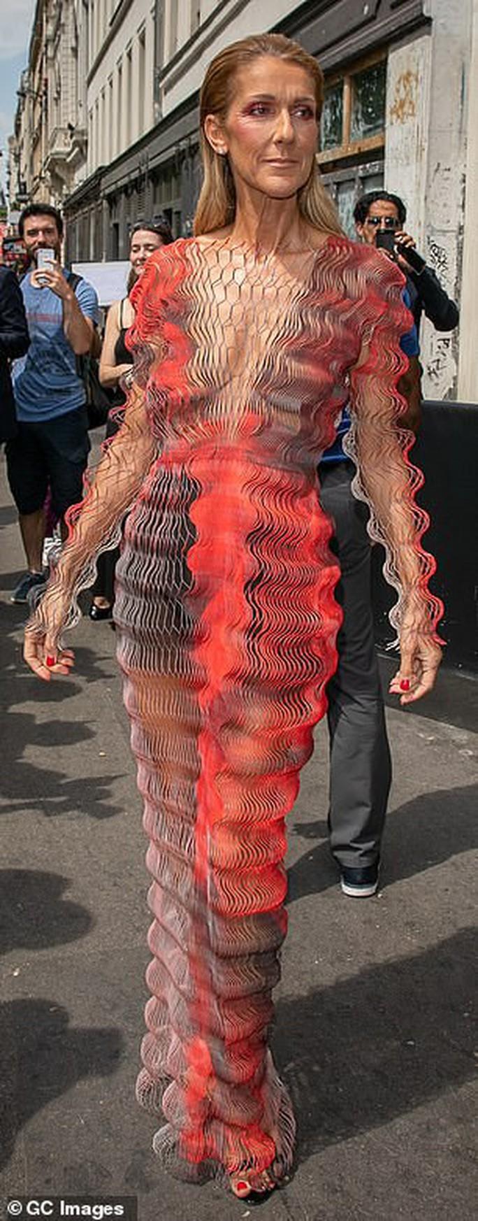 Họa mi Celine Dion gây sốc với loạt ảnh quái lạ - Ảnh 10.
