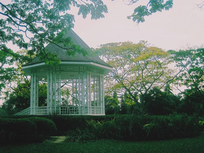 Từ mưa trong nhà đến nấc thang lên thiên đường, ra mà xem Singapore ngát xanh này! - Ảnh 6.