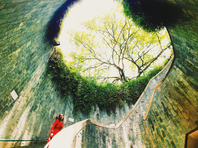 Từ mưa trong nhà đến nấc thang lên thiên đường, ra mà xem Singapore ngát xanh này! - Ảnh 4.