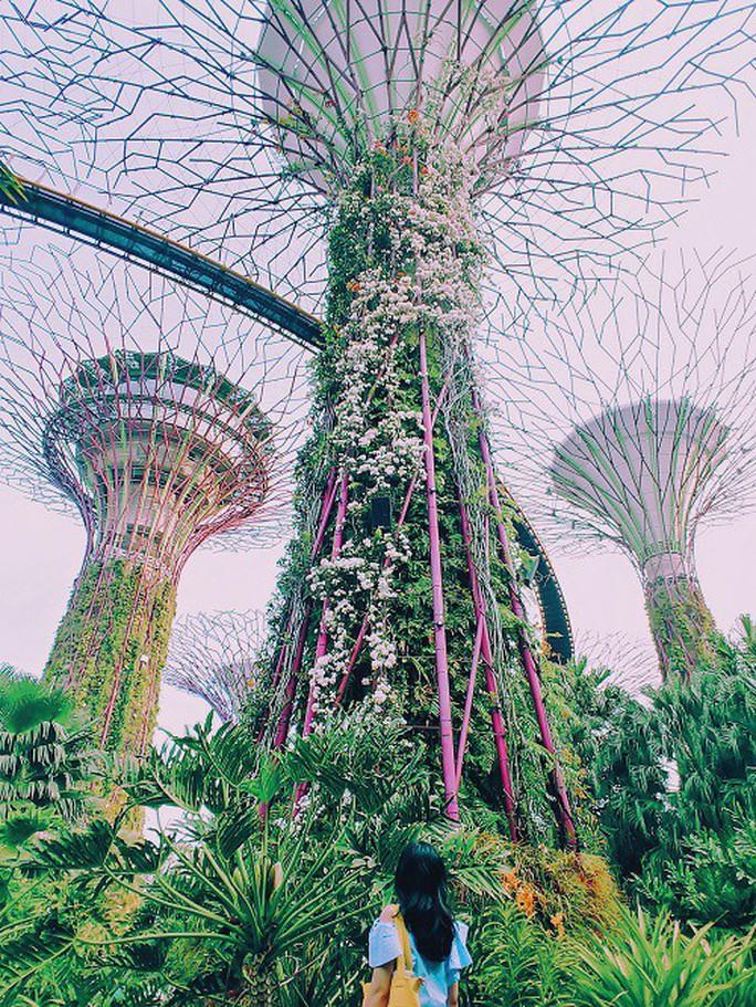 Từ mưa trong nhà đến nấc thang lên thiên đường, ra mà xem Singapore ngát xanh này! - Ảnh 5.