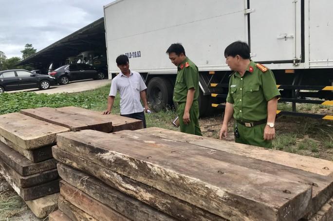 Phát hiện kho chứa gỗ lậu quý ở Trường Sơn - Ảnh 1.