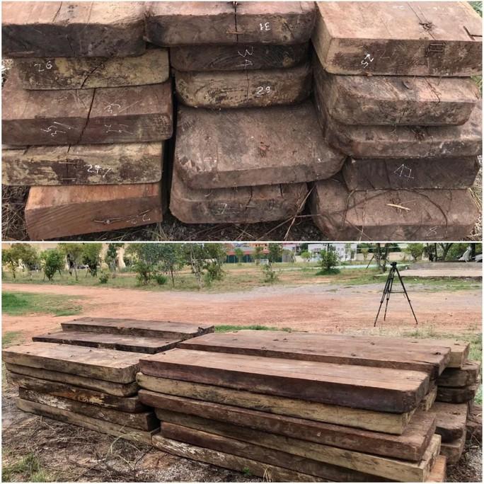 Phát hiện kho chứa gỗ lậu quý ở Trường Sơn - Ảnh 2.